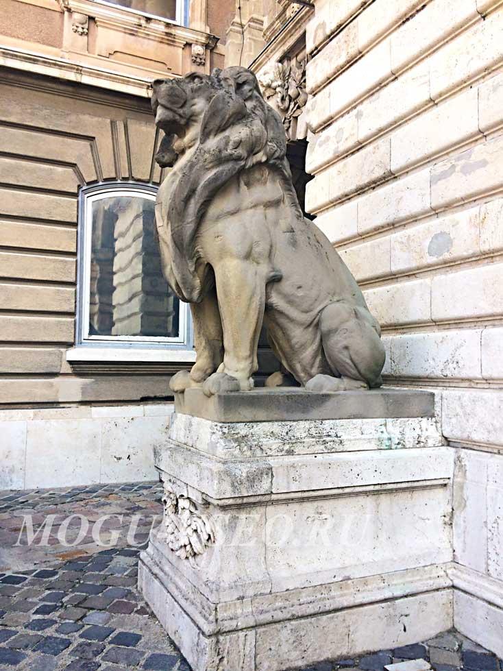 Будапешт королевский дворец лев фото
