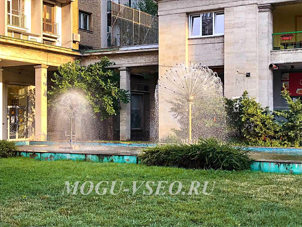 Бухарест фонтаны одуванчики фото